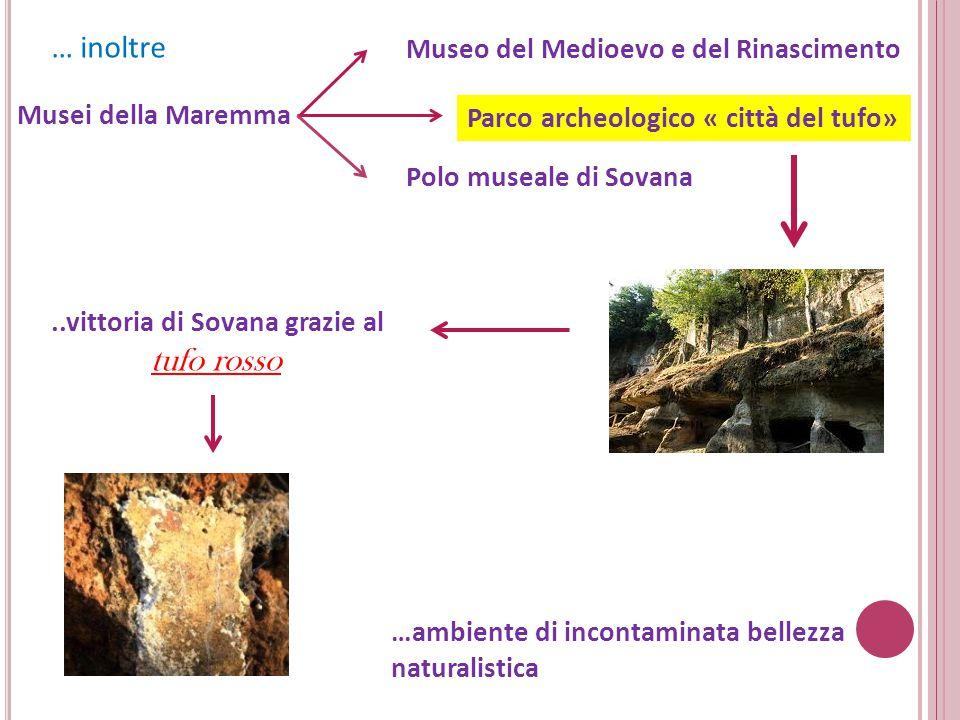 … inoltre Museo del Medioevo e del Rinascimento Musei della Maremma