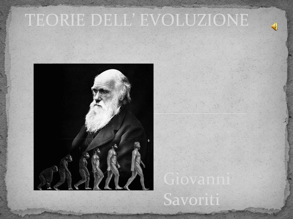 TEORIE DELL' EVOLUZIONE
