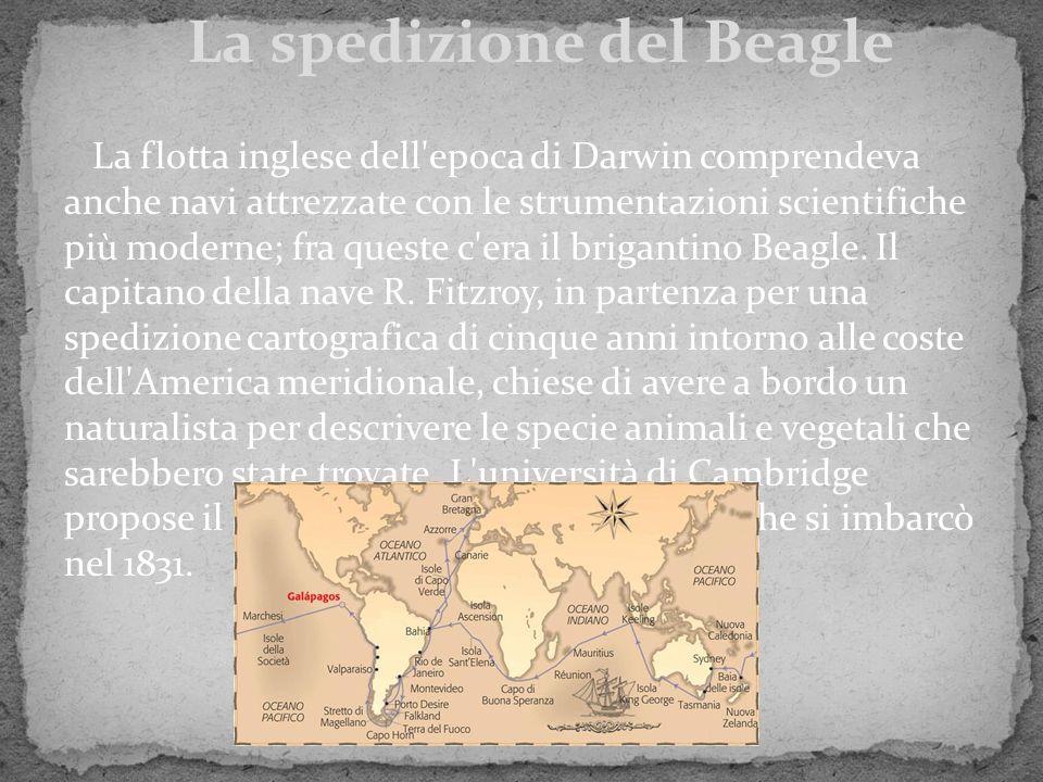 La spedizione del Beagle