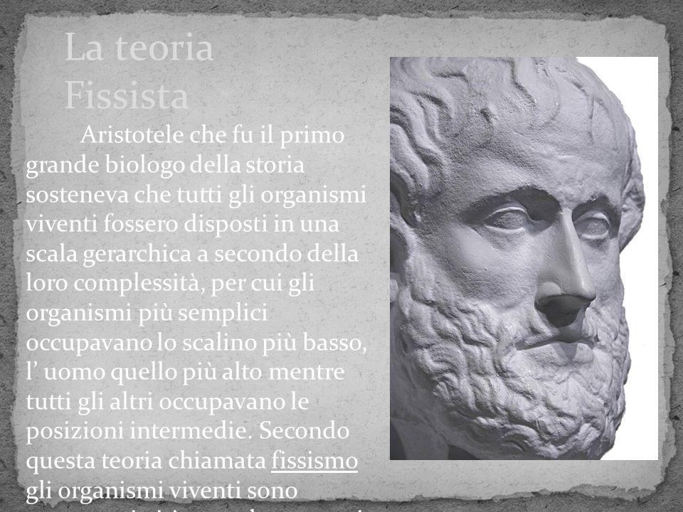 La teoria Fissista