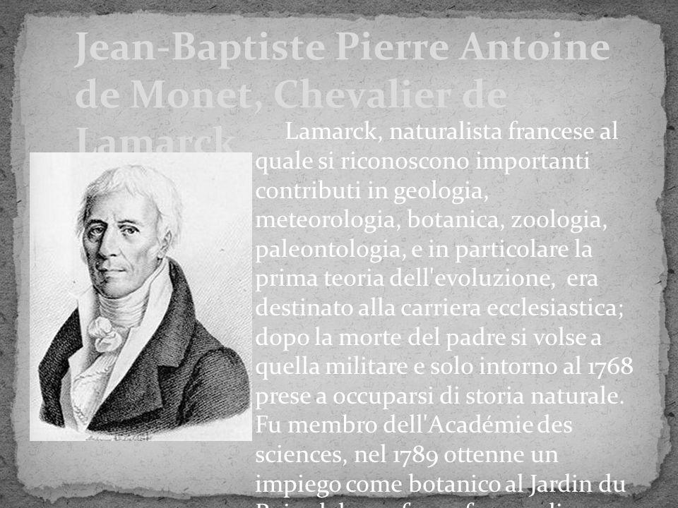Jean-Baptiste Pierre Antoine de Monet, Chevalier de Lamarck