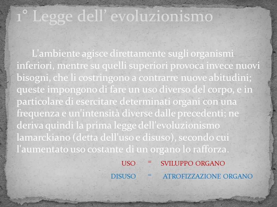 1° Legge dell' evoluzionismo