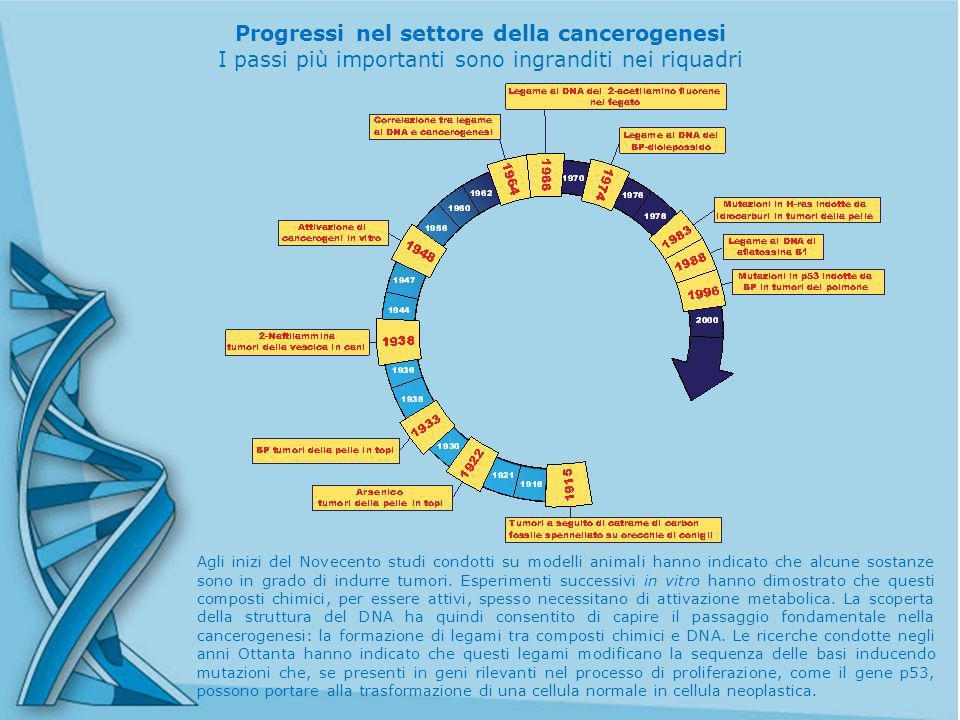 Progressi nel settore della cancerogenesi