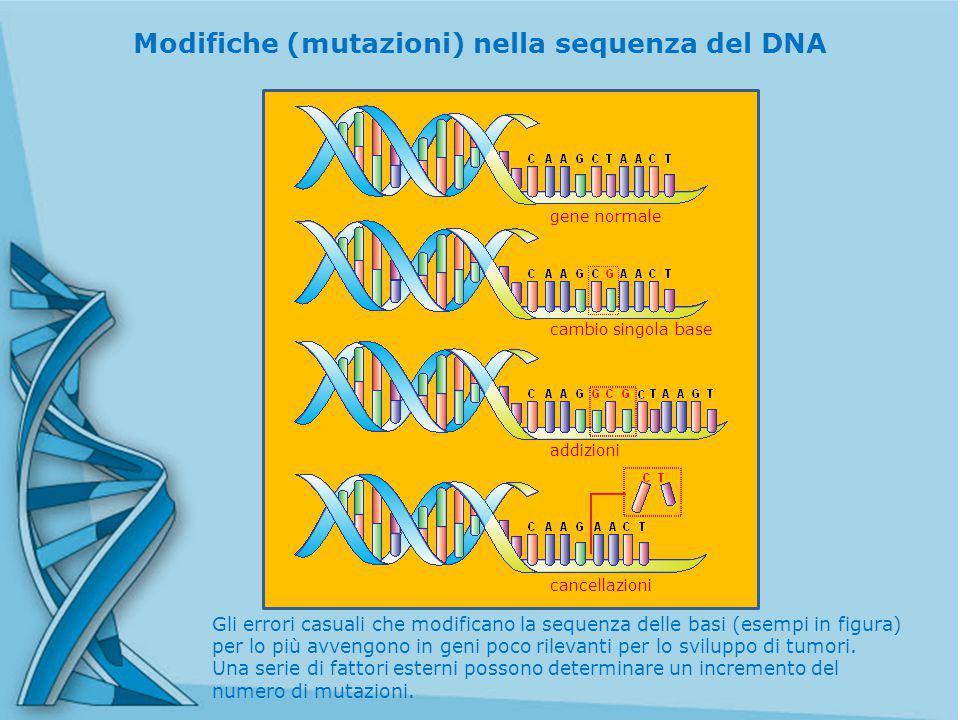Modifiche (mutazioni) nella sequenza del DNA