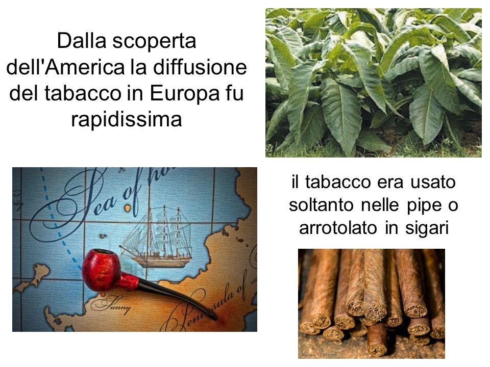 il tabacco era usato soltanto nelle pipe o arrotolato in sigari