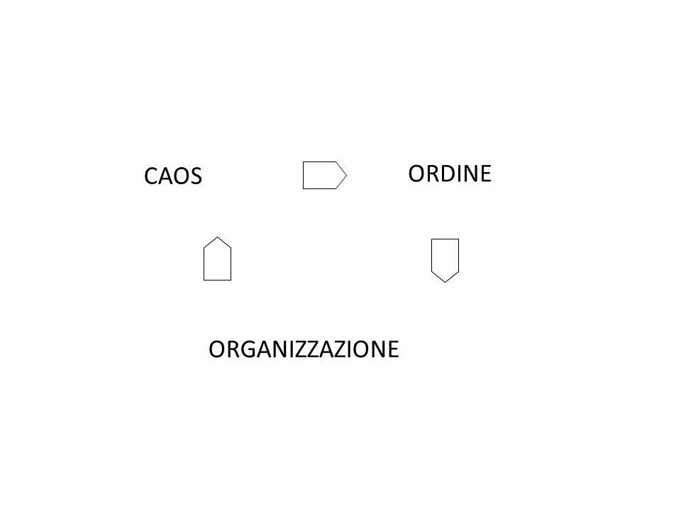 CAOS ORDINE ORGANIZZAZIONE