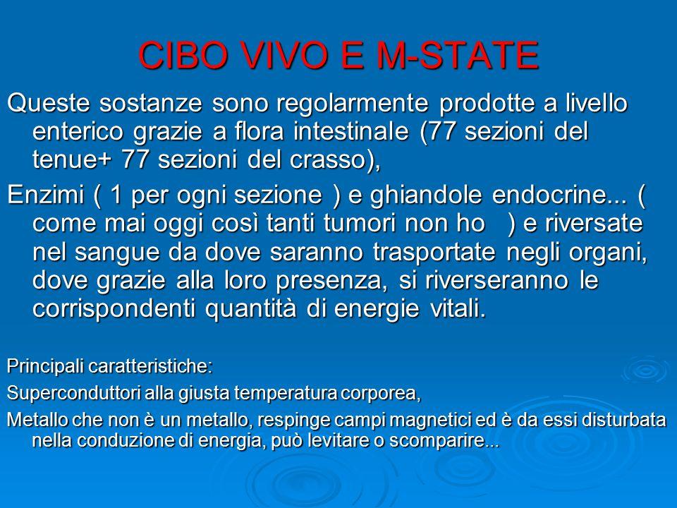 CIBO VIVO E M-STATE