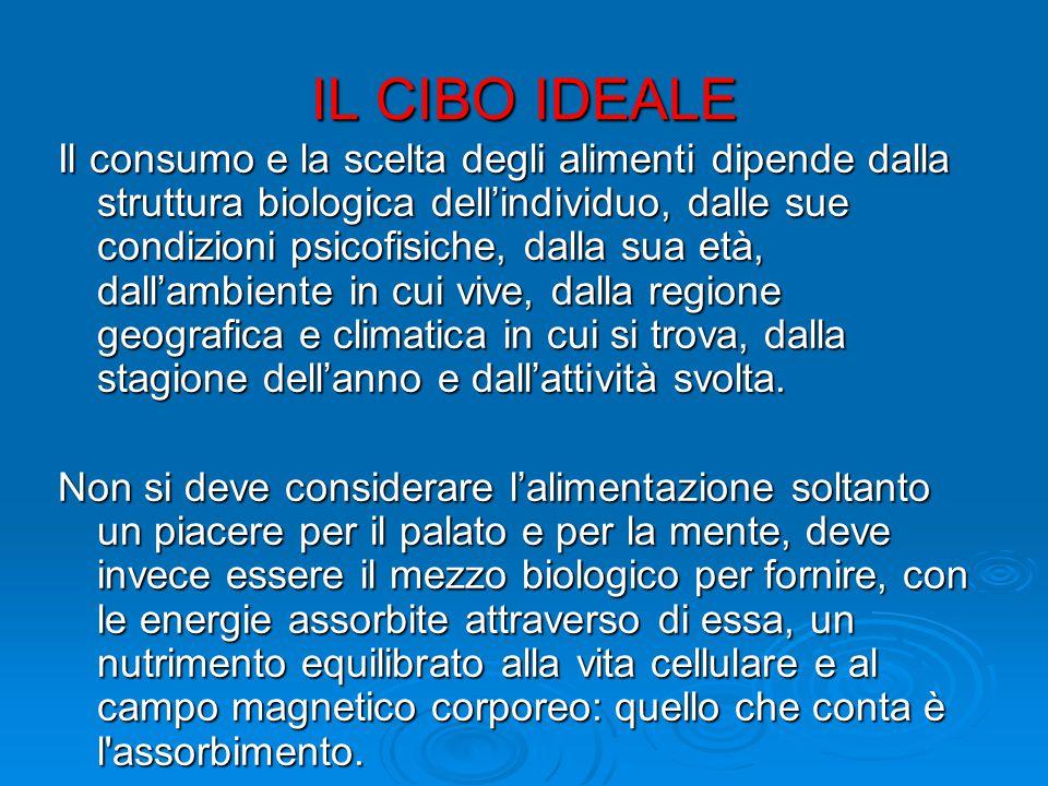 IL CIBO IDEALE