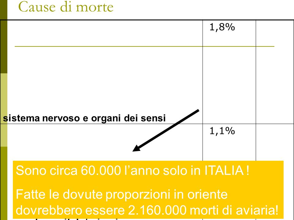 Cause di morte Sono circa 60.000 l'anno solo in ITALIA !