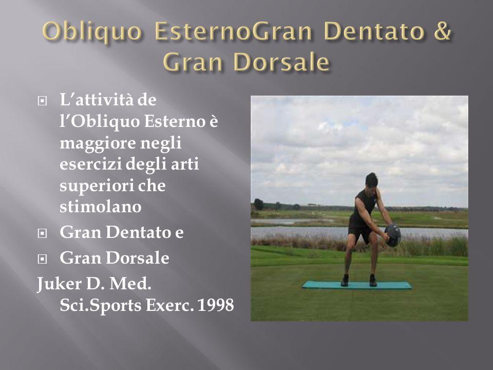 Obliquo EsternoGran Dentato & Gran Dorsale