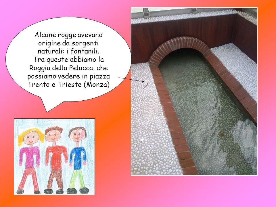 Alcune rogge avevano origine da sorgenti naturali: i fontanili.