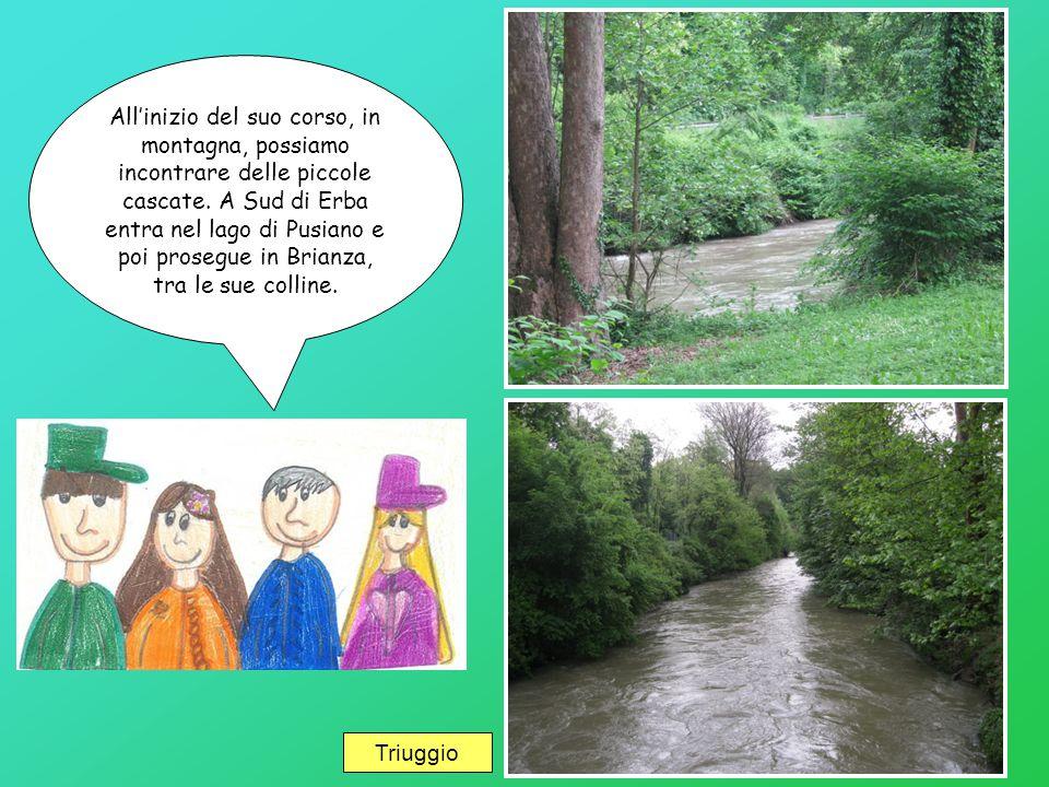 All'inizio del suo corso, in montagna, possiamo incontrare delle piccole cascate. A Sud di Erba entra nel lago di Pusiano e poi prosegue in Brianza, tra le sue colline.
