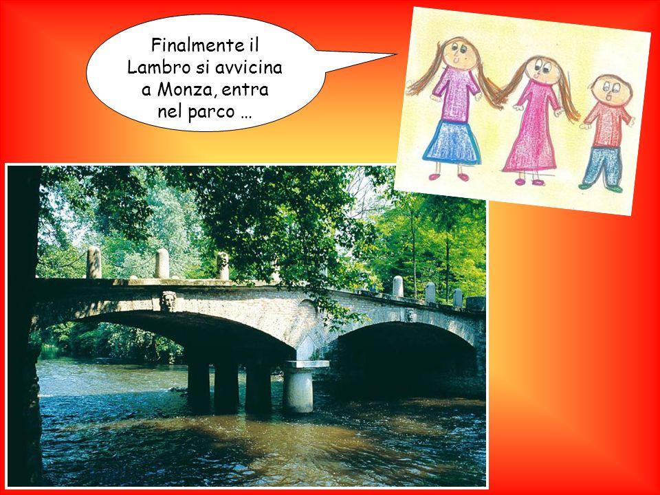 Finalmente il Lambro si avvicina a Monza, entra nel parco …