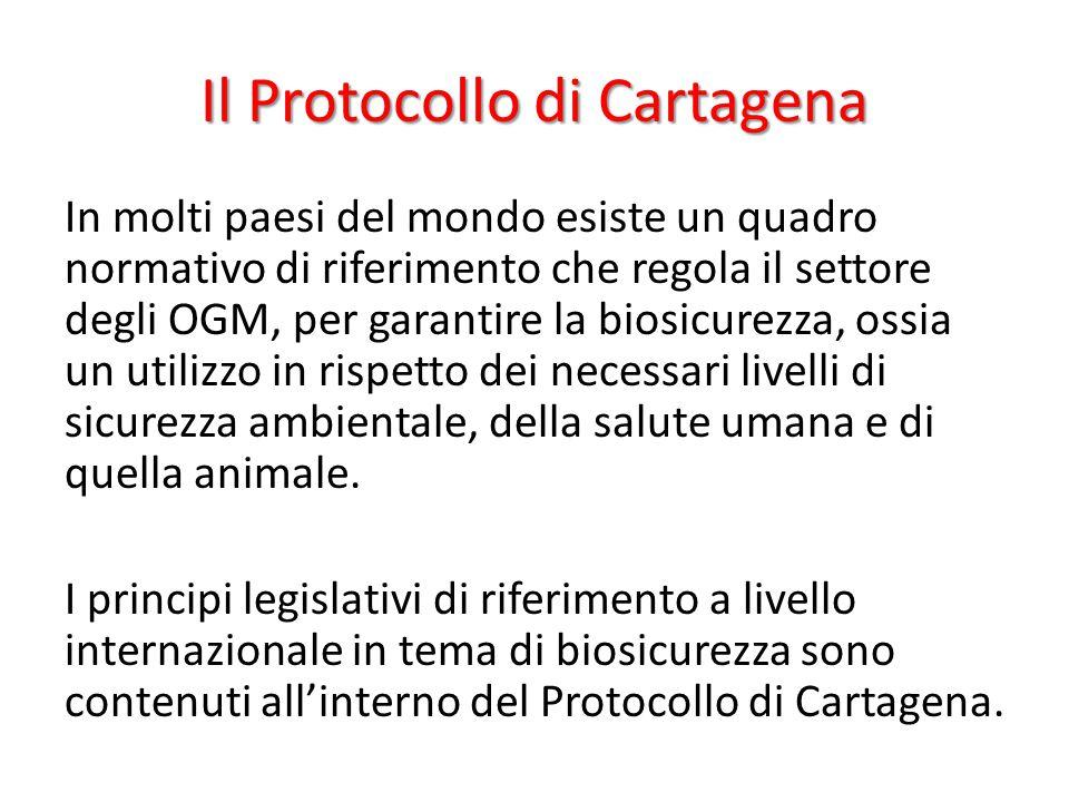 Il Protocollo di Cartagena