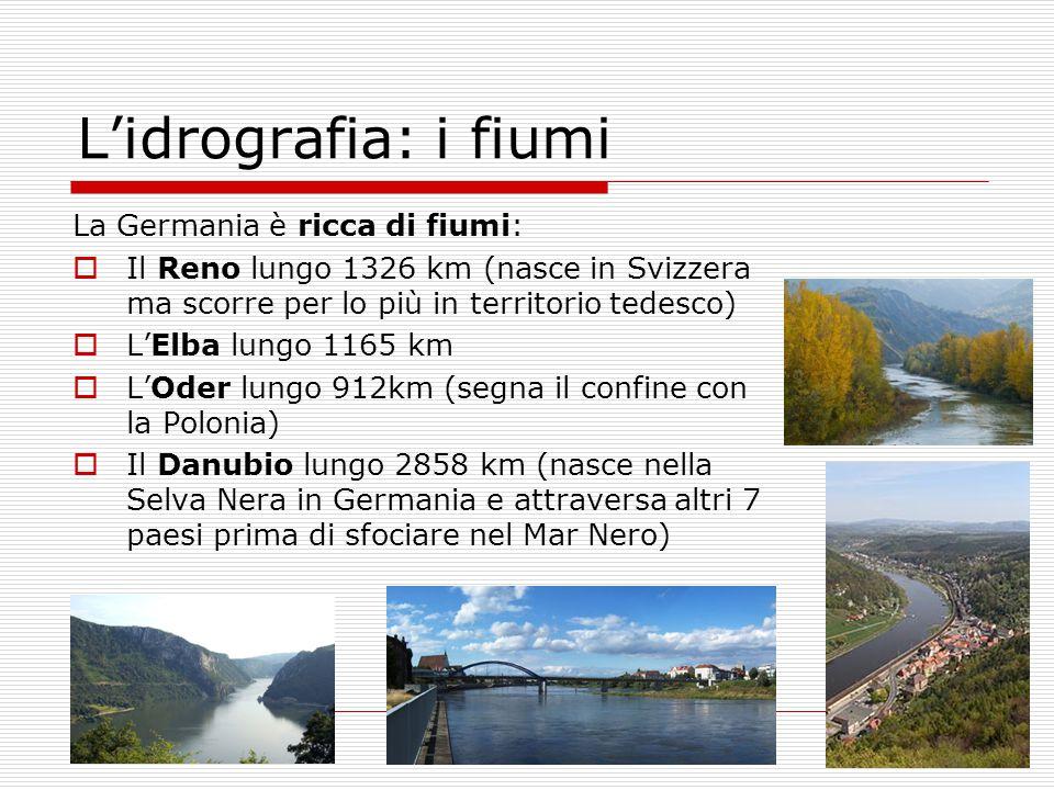 L'idrografia: i fiumi La Germania è ricca di fiumi: