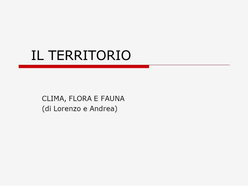 CLIMA, FLORA E FAUNA (di Lorenzo e Andrea)