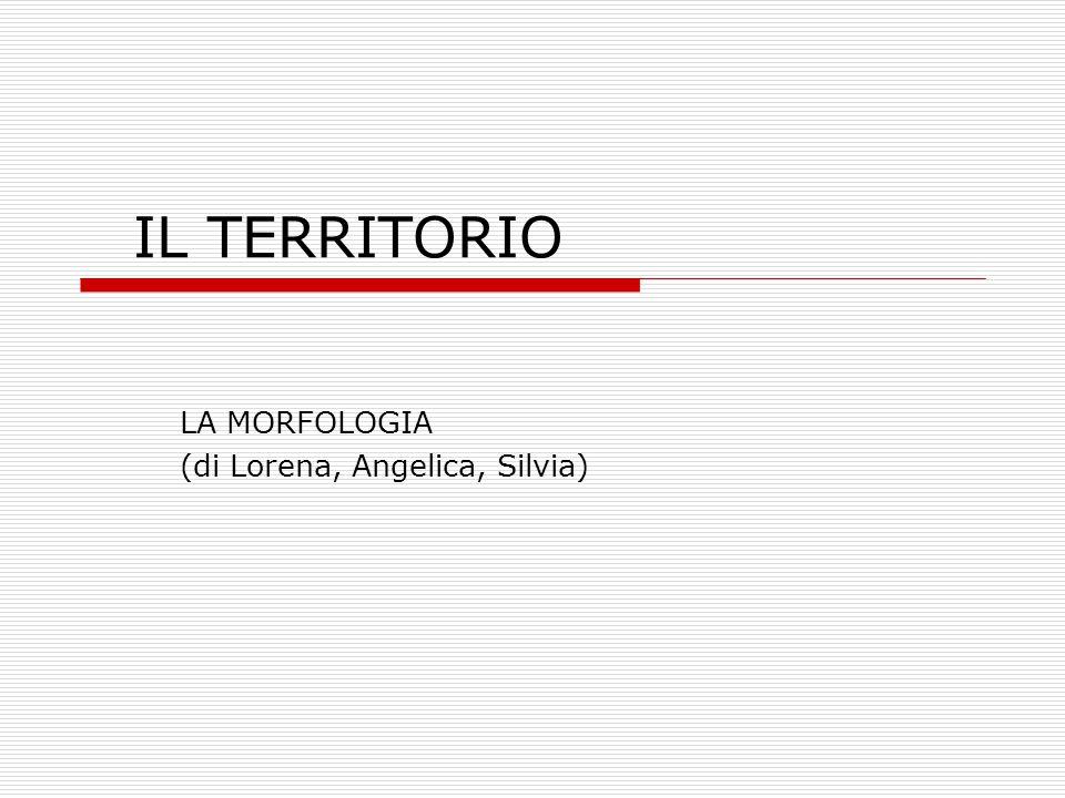 LA MORFOLOGIA (di Lorena, Angelica, Silvia)