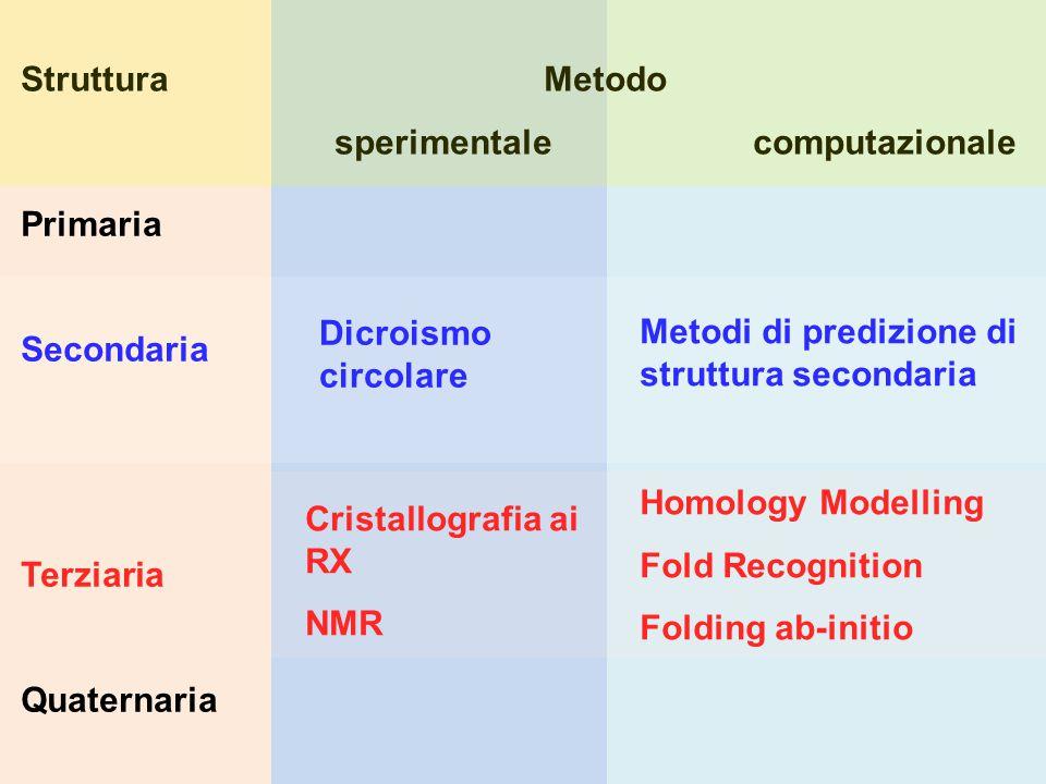 Struttura Metodo sperimentale computazionale. Primaria. Secondaria. Terziaria. Quaternaria.