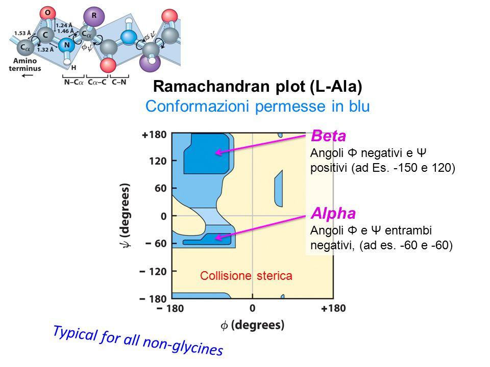 Ramachandran plot (L-Ala)