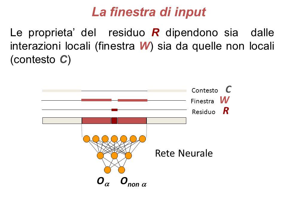 La finestra di input Le proprieta' del residuo R dipendono sia dalle interazioni locali (finestra W) sia da quelle non locali (contesto C)