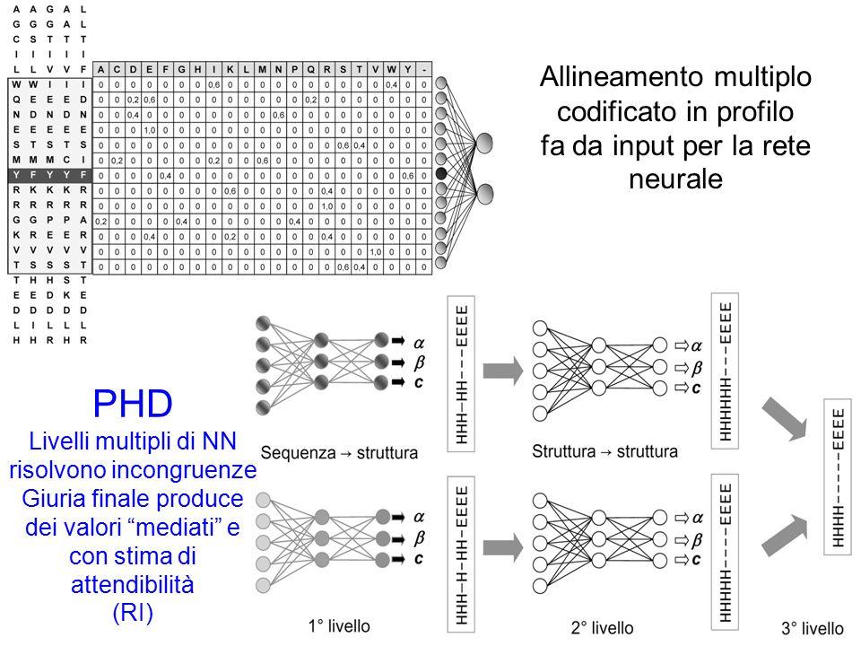 PHD Allineamento multiplo codificato in profilo