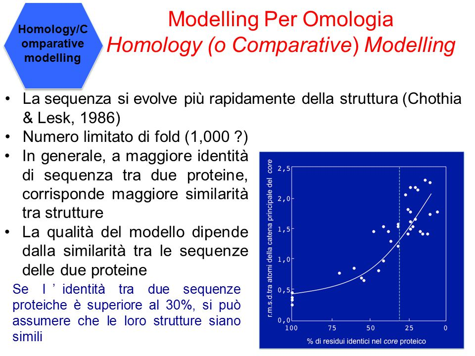 Homology/Comparative modelling