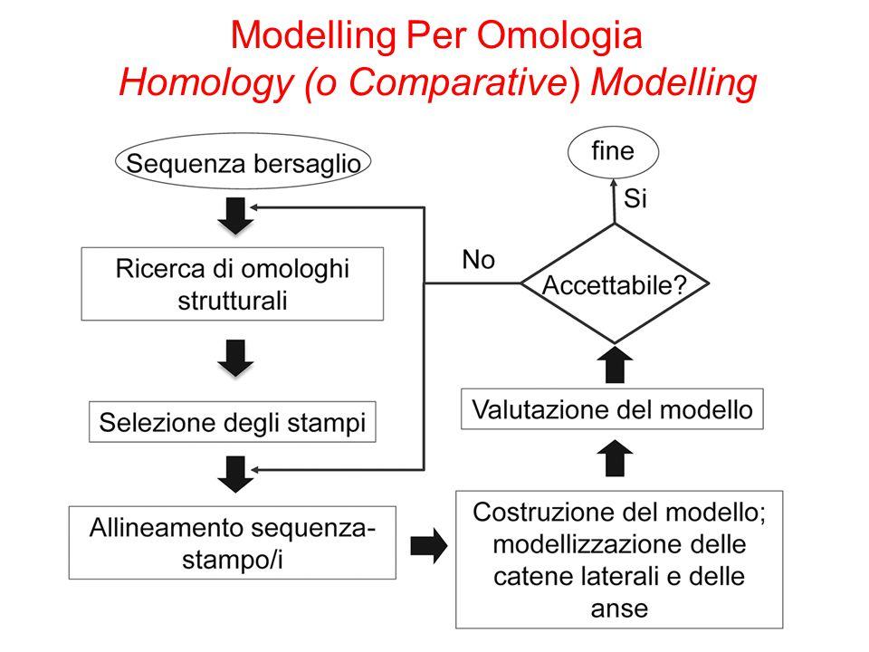 Modelling Per Omologia Homology (o Comparative) Modelling