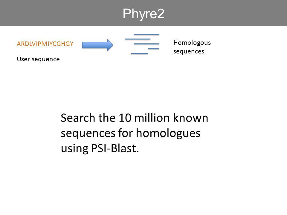 Phyre2 ARDLVIPMIYCGHGY. Homologous sequences. User sequence.
