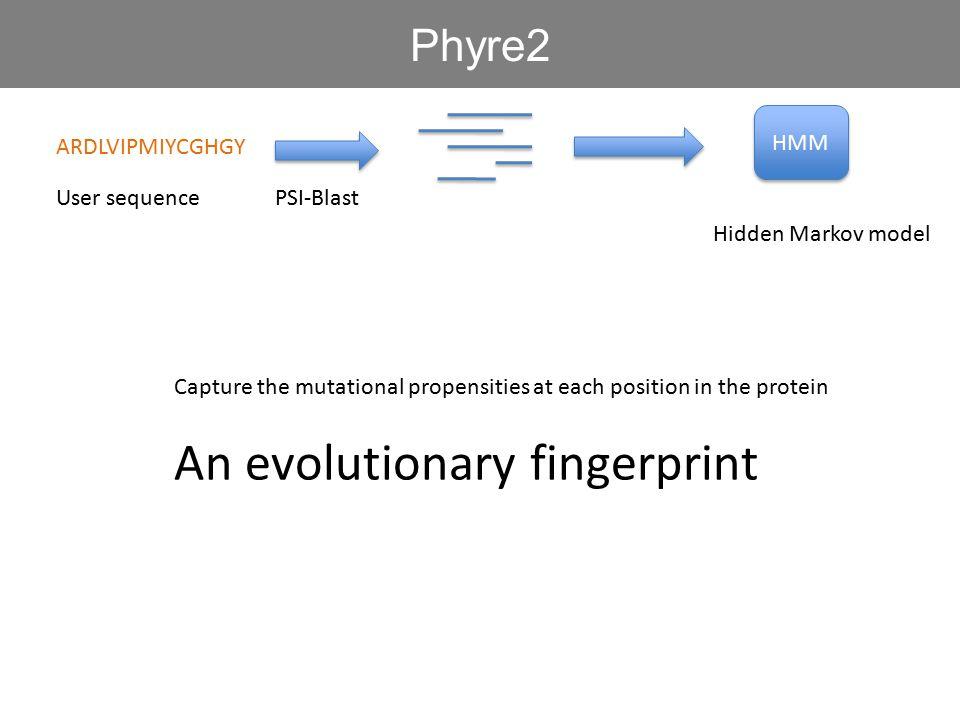 An evolutionary fingerprint
