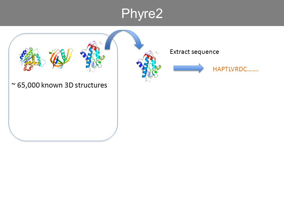 Phyre2 Extract sequence HAPTLVRDC……. ~ 65,000 known 3D structures