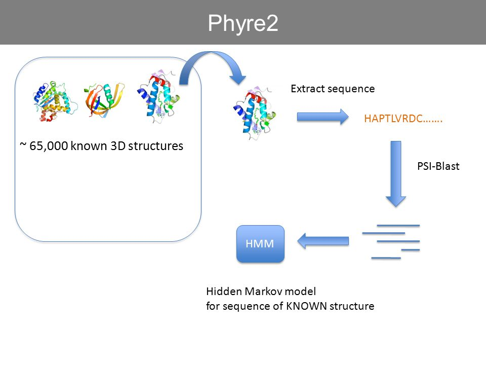 Phyre2 ~ 65,000 known 3D structures Extract sequence HAPTLVRDC…….