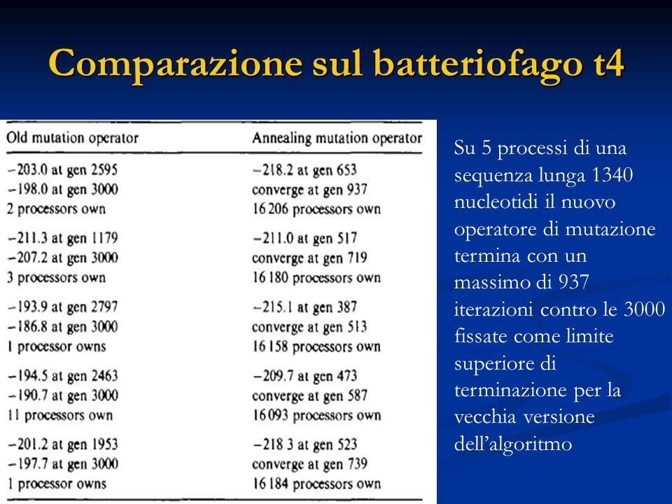Comparazione sul batteriofago t4