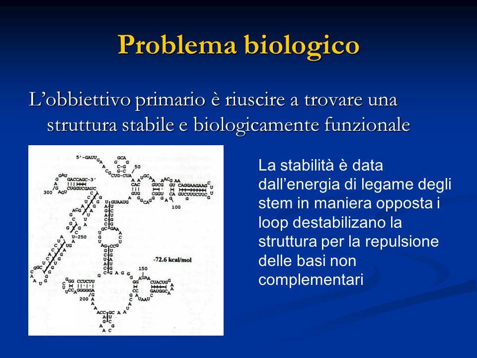 Problema biologico L'obbiettivo primario è riuscire a trovare una struttura stabile e biologicamente funzionale.