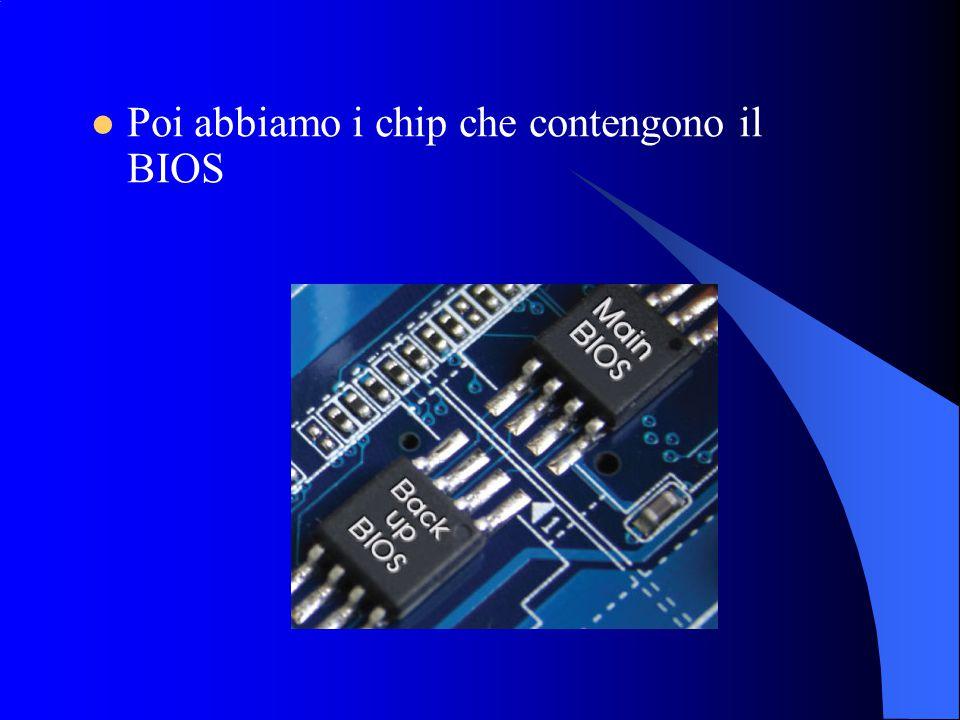 Poi abbiamo i chip che contengono il BIOS