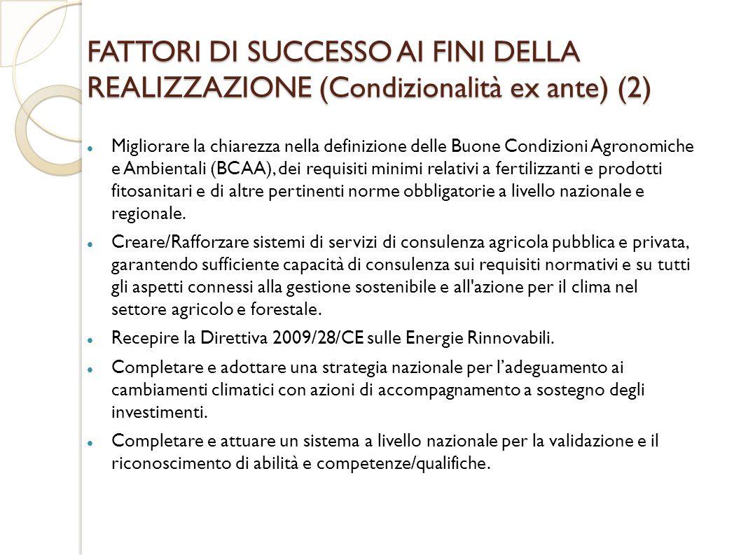 FATTORI DI SUCCESSO AI FINI DELLA REALIZZAZIONE (Condizionalità ex ante) (2)