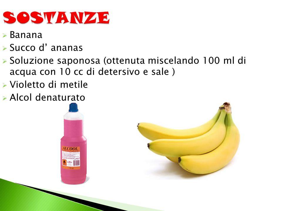SOSTANZE Banana Succo d' ananas