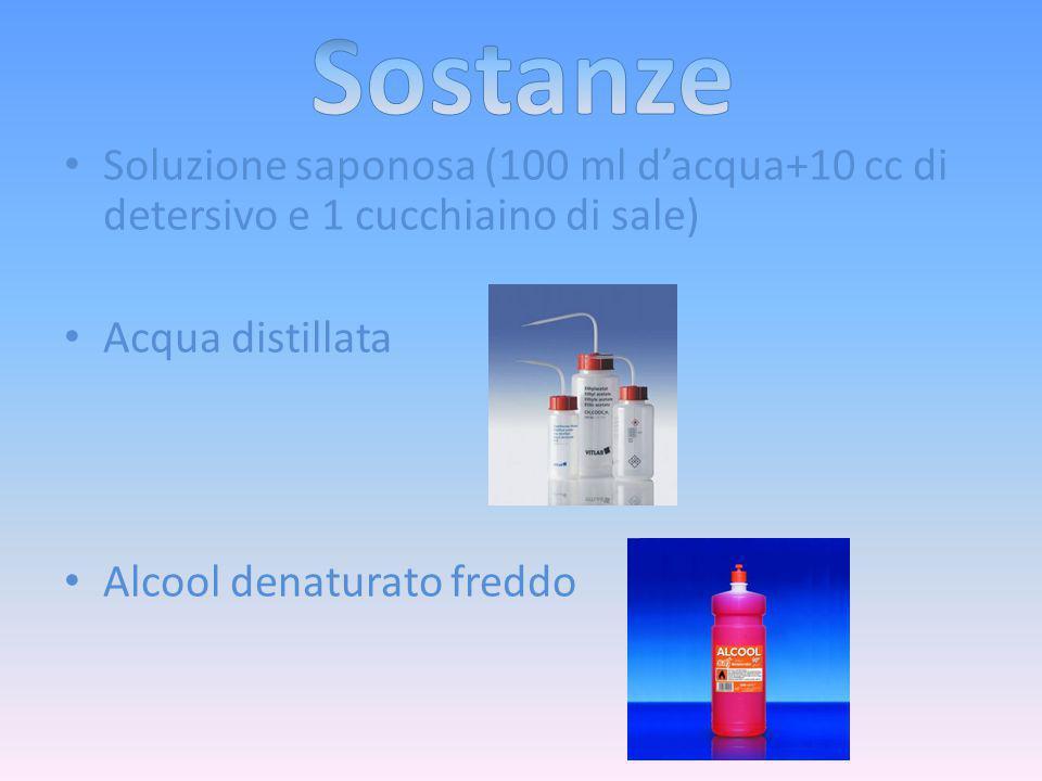 Sostanze Soluzione saponosa (100 ml d'acqua+10 cc di detersivo e 1 cucchiaino di sale) Acqua distillata.
