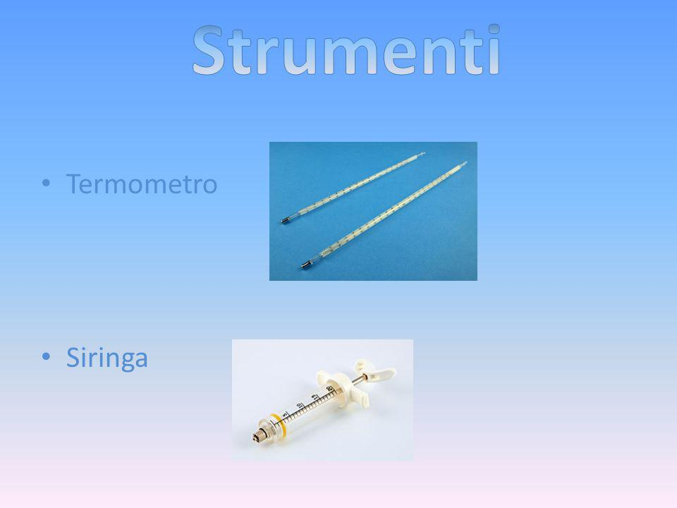 Strumenti Termometro Siringa