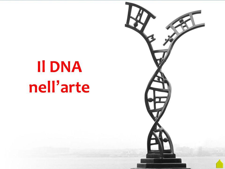 Il DNA nell'arte