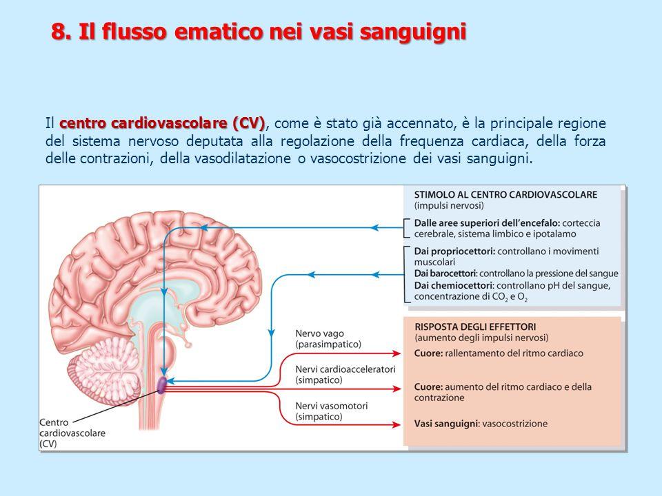 8. Il flusso ematico nei vasi sanguigni