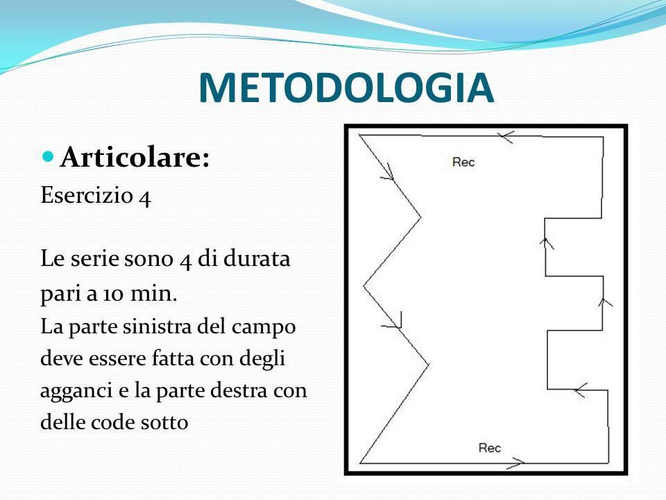 METODOLOGIA Articolare: Esercizio 4 Le serie sono 4 di durata