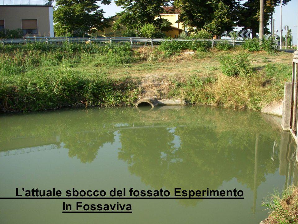L'attuale sbocco del fossato Esperimento