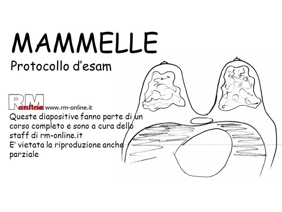 MAMMELLE Protocollo d'esame RM