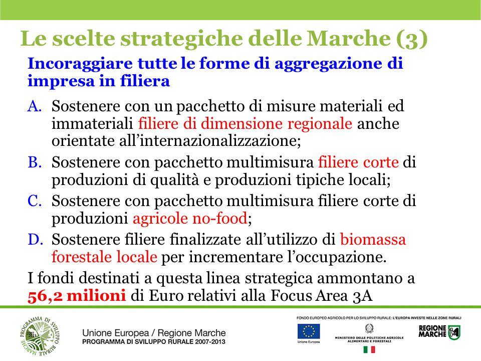 Le scelte strategiche delle Marche (3)