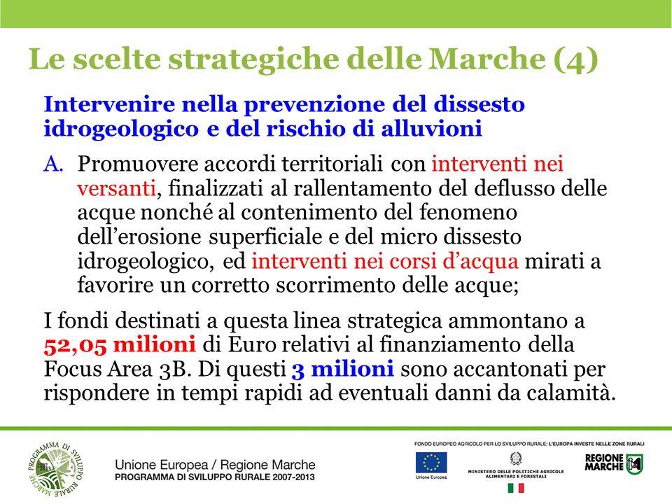 Le scelte strategiche delle Marche (4)