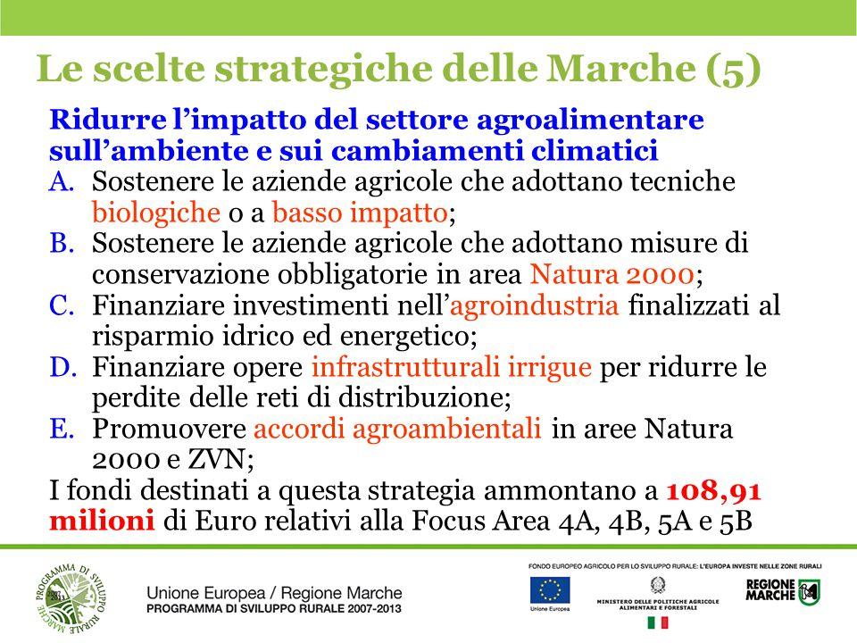 Le scelte strategiche delle Marche (5)