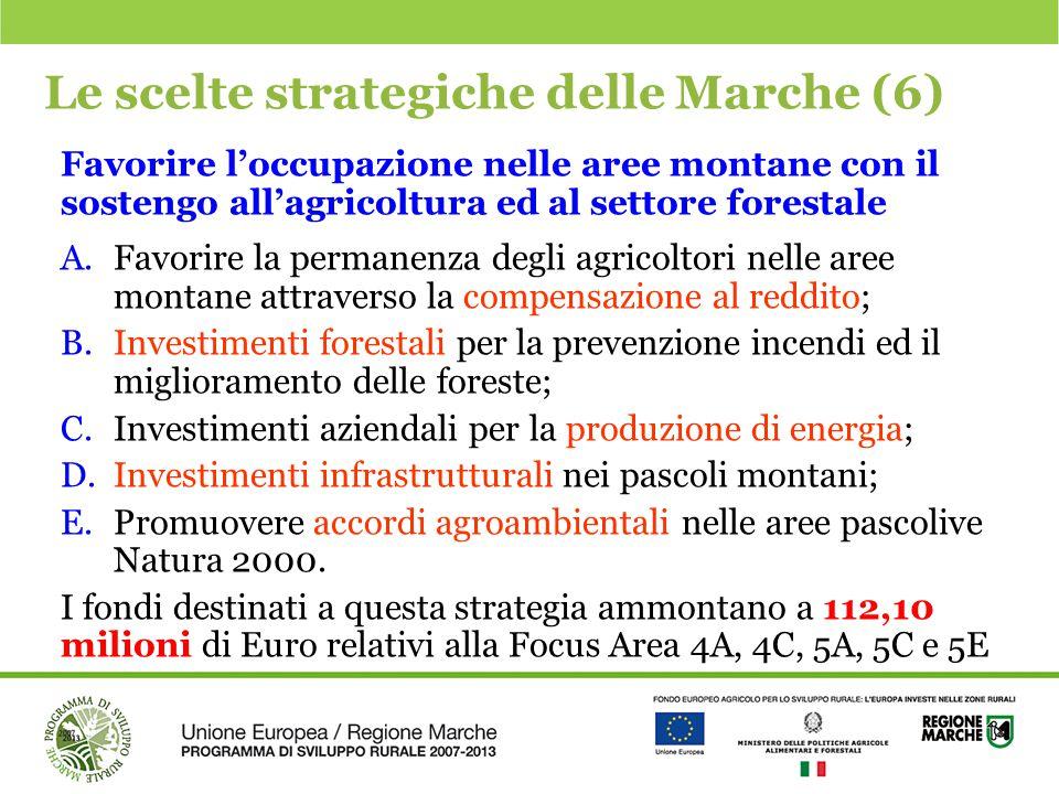 Le scelte strategiche delle Marche (6)