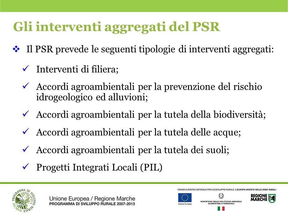 Gli interventi aggregati del PSR
