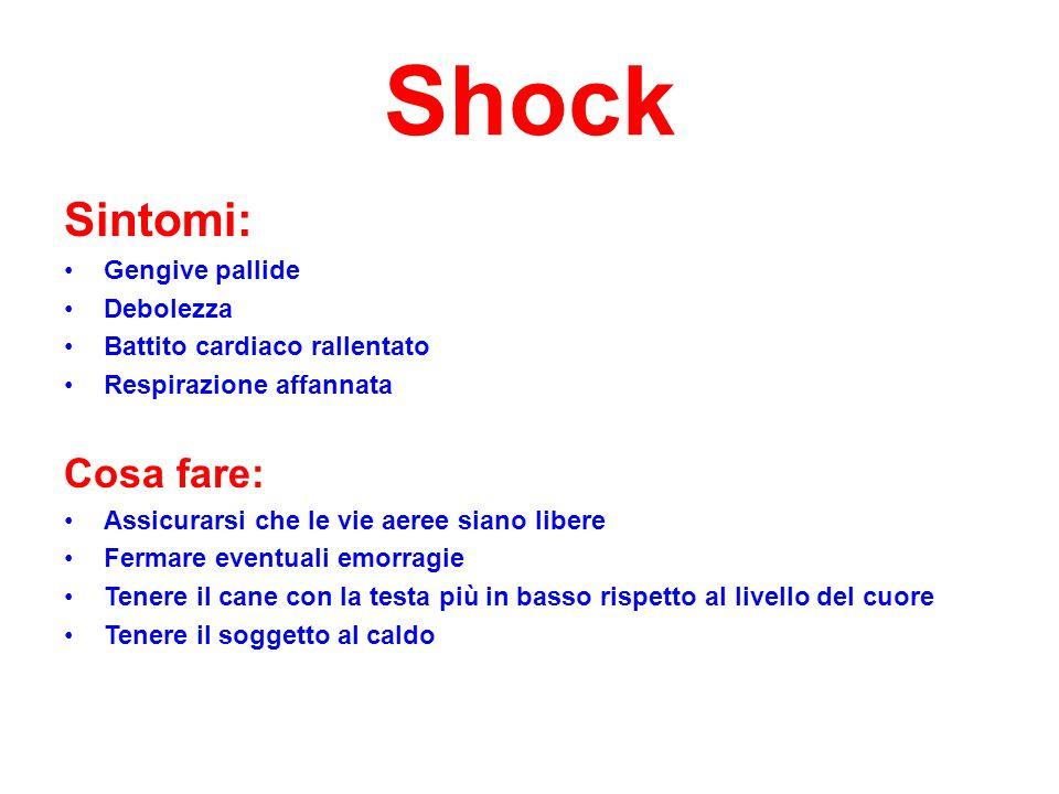 Shock Sintomi: Cosa fare: Gengive pallide Debolezza