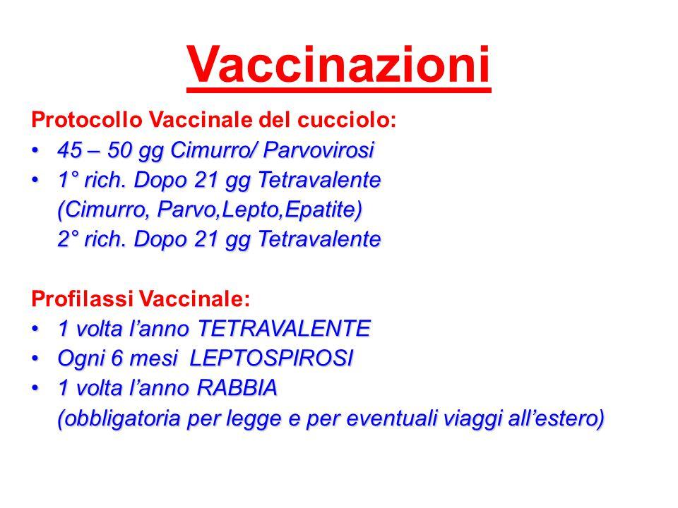 Vaccinazioni Protocollo Vaccinale del cucciolo: